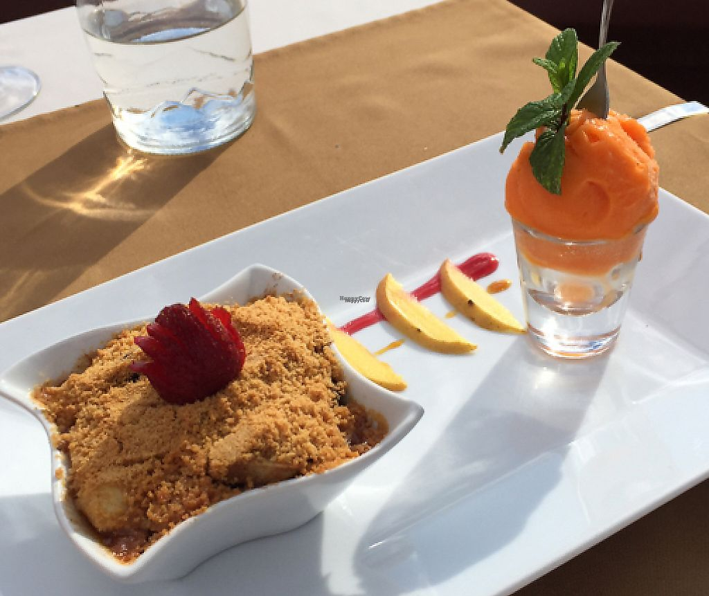 """Photo of CLOSED: Olives Restaurante  by <a href=""""/members/profile/Squirrel64"""">Squirrel64</a> <br/>Apple crumble and sorbet dessert <br/> January 21, 2017  - <a href='/contact/abuse/image/75356/240967'>Report</a>"""