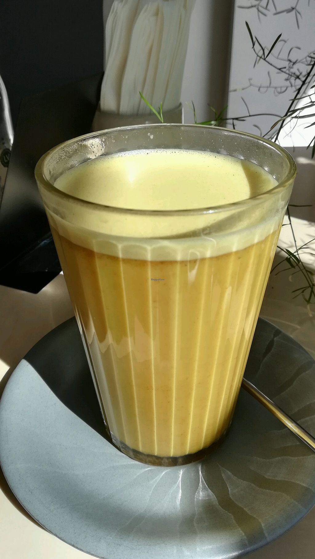 "Photo of Terapija  by <a href=""/members/profile/GreenGarnet"">GreenGarnet</a> <br/>Turmeric latte  <br/> April 21, 2018  - <a href='/contact/abuse/image/75403/388998'>Report</a>"