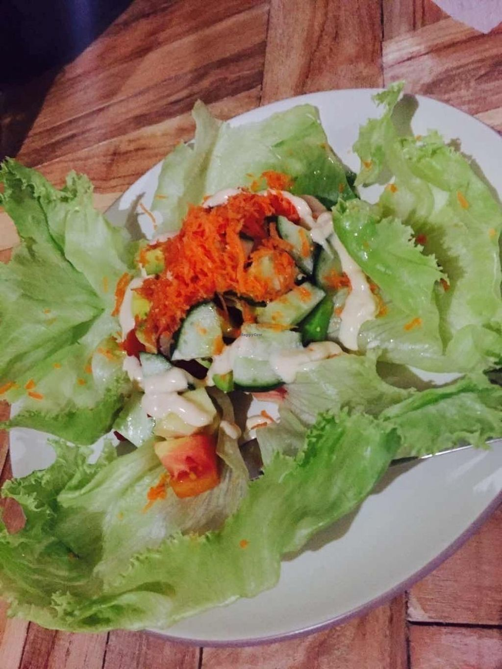 """Photo of Bali Maitreya Cafe  by <a href=""""/members/profile/rodgo"""">rodgo</a> <br/>Green salad  <br/> July 15, 2016  - <a href='/contact/abuse/image/75459/159943'>Report</a>"""