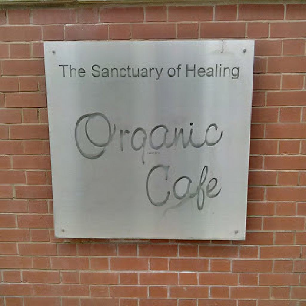 """Photo of The Sanctuary of Healing  by <a href=""""/members/profile/Veganolive1"""">Veganolive1</a> <br/>The Sanctuary of Healing Organic Cafe <br/> June 22, 2016  - <a href='/contact/abuse/image/75487/155537'>Report</a>"""
