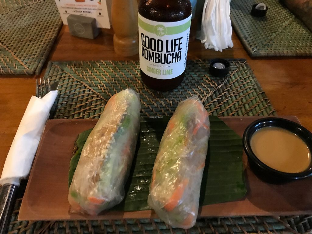 """Photo of The Cashew Tree  by <a href=""""/members/profile/LolaNachtigall"""">LolaNachtigall</a> <br/>Tempeh Rolls <br/> November 18, 2017  - <a href='/contact/abuse/image/75644/326676'>Report</a>"""