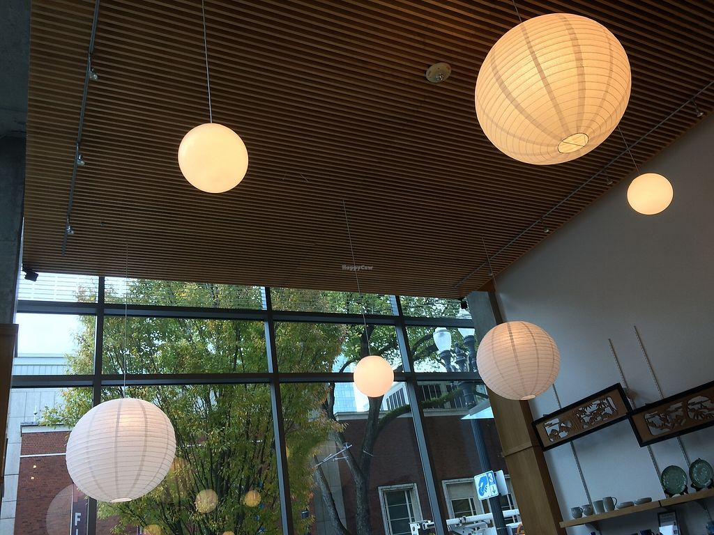 "Photo of Behind the Museum Cafe  by <a href=""/members/profile/Mdrutz"">Mdrutz</a> <br/>Clean Japanese Decor <br/> October 17, 2017  - <a href='/contact/abuse/image/75653/316193'>Report</a>"
