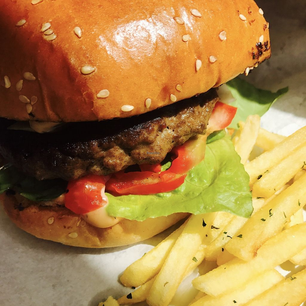 """Photo of Rainbow  by <a href=""""/members/profile/batman_is_vegan"""">batman_is_vegan</a> <br/>Vegan burger with chips <br/> September 17, 2017  - <a href='/contact/abuse/image/75678/305490'>Report</a>"""