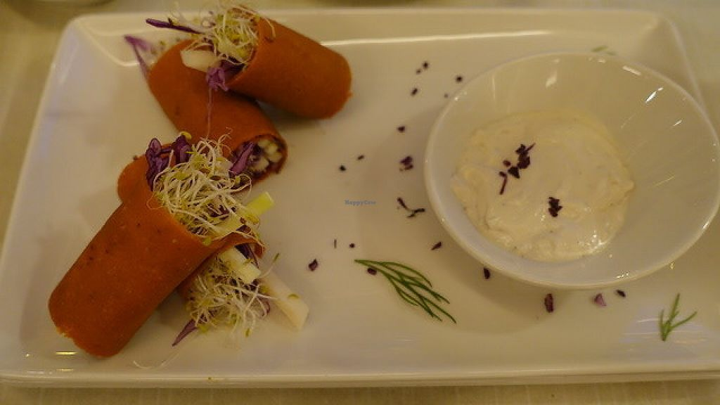 "Photo of Level Veggie Bistro  by <a href=""/members/profile/cleme36"">cleme36</a> <br/>veggie  rolls with cashew creme <br/> May 25, 2017  - <a href='/contact/abuse/image/75754/262406'>Report</a>"