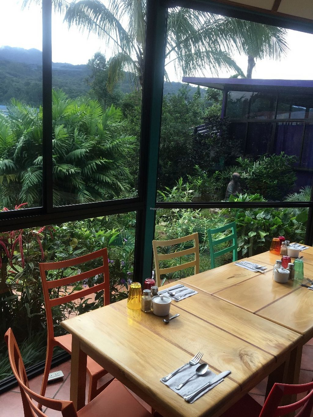 """Photo of CLOSED: The Greenhouse at Isla Verde  by <a href=""""/members/profile/greenhouseislaverde"""">greenhouseislaverde</a> <br/>Inside our restaurant we have the perfect views of nature.  <br/> July 7, 2016  - <a href='/contact/abuse/image/75828/158267'>Report</a>"""