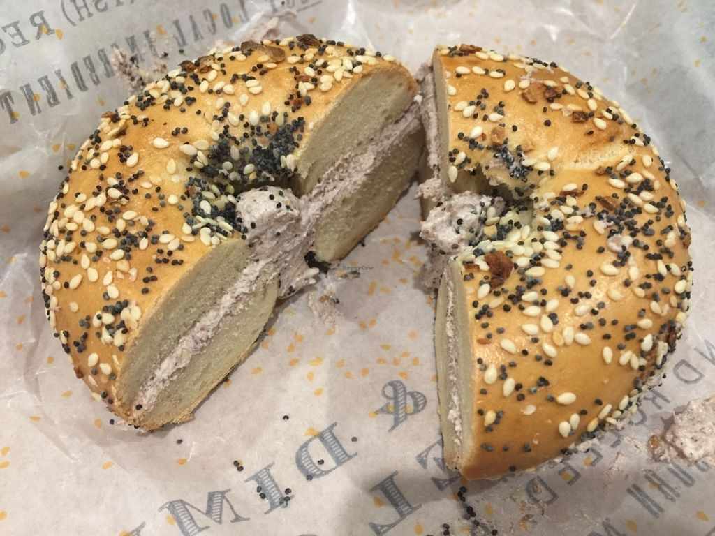 "Photo of 5 & Dime Bagel Co.  by <a href=""/members/profile/Tiggy"">Tiggy</a> <br/>Olive and za'atar with vegan cream cheese - July 2016 <br/> July 15, 2016  - <a href='/contact/abuse/image/75950/159952'>Report</a>"