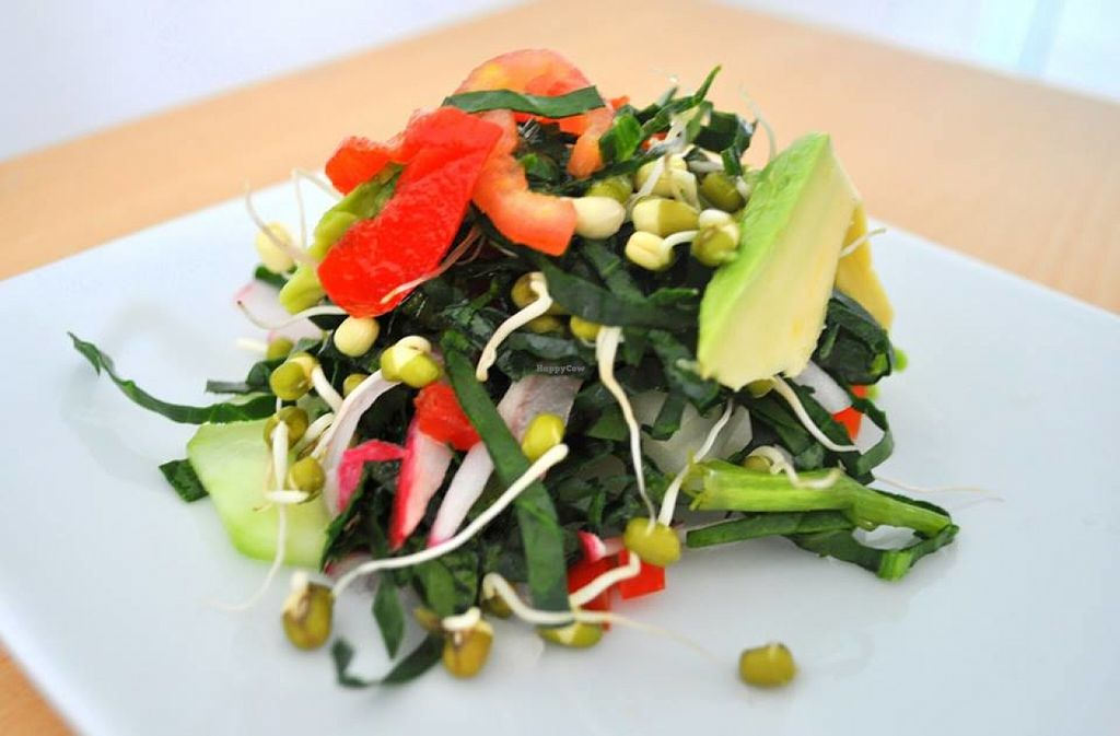"""Photo of Naturlandia  by <a href=""""/members/profile/RominaGP"""">RominaGP</a> <br/>Delicious Salad with avocado, tomatoe, spinach, lettuce and sprouts <br/> July 4, 2016  - <a href='/contact/abuse/image/75984/157827'>Report</a>"""