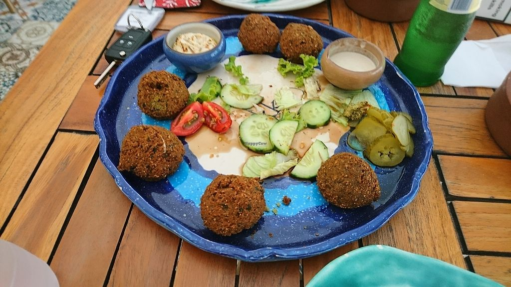 """Photo of Rokka  by <a href=""""/members/profile/RalphGrove"""">RalphGrove</a> <br/>falafel plate (half eaten :)  <br/> August 4, 2017  - <a href='/contact/abuse/image/76042/288579'>Report</a>"""
