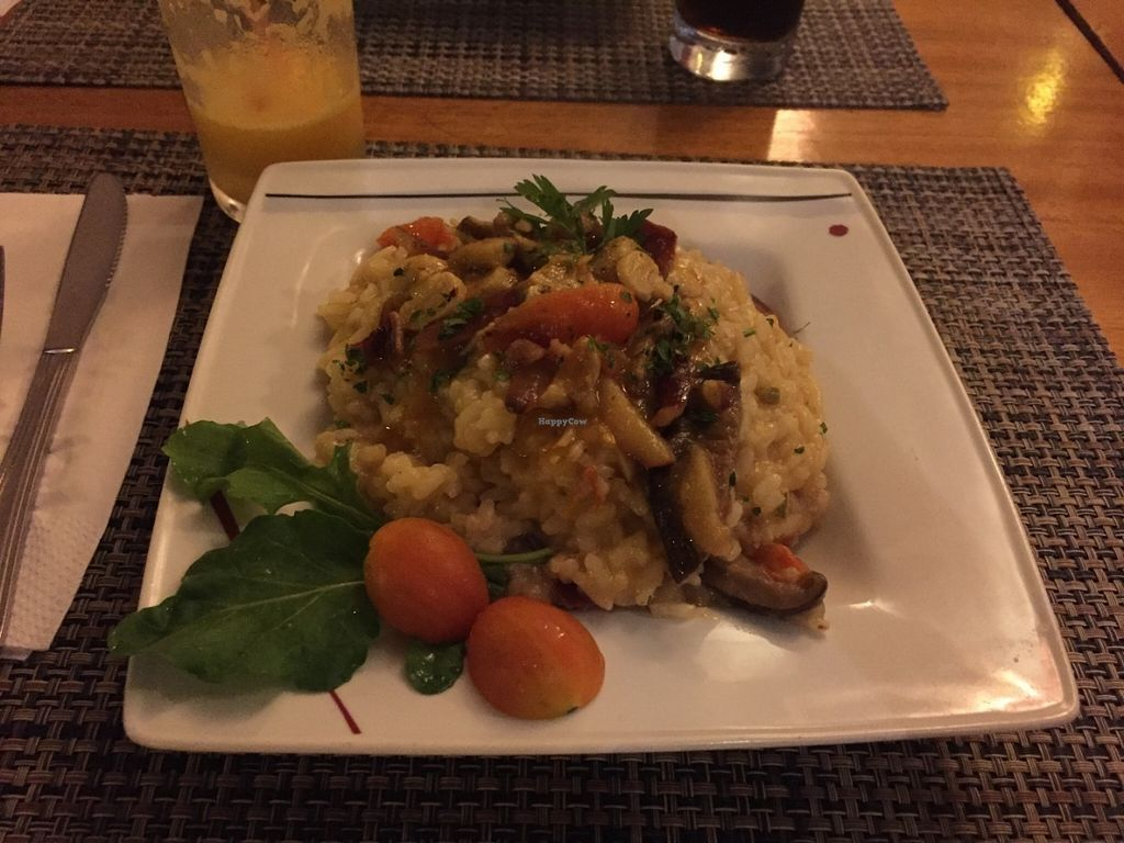 """Photo of Spaghetto  by <a href=""""/members/profile/Paolla"""">Paolla</a> <br/>Vegan risotto <br/> July 31, 2016  - <a href='/contact/abuse/image/76050/163945'>Report</a>"""