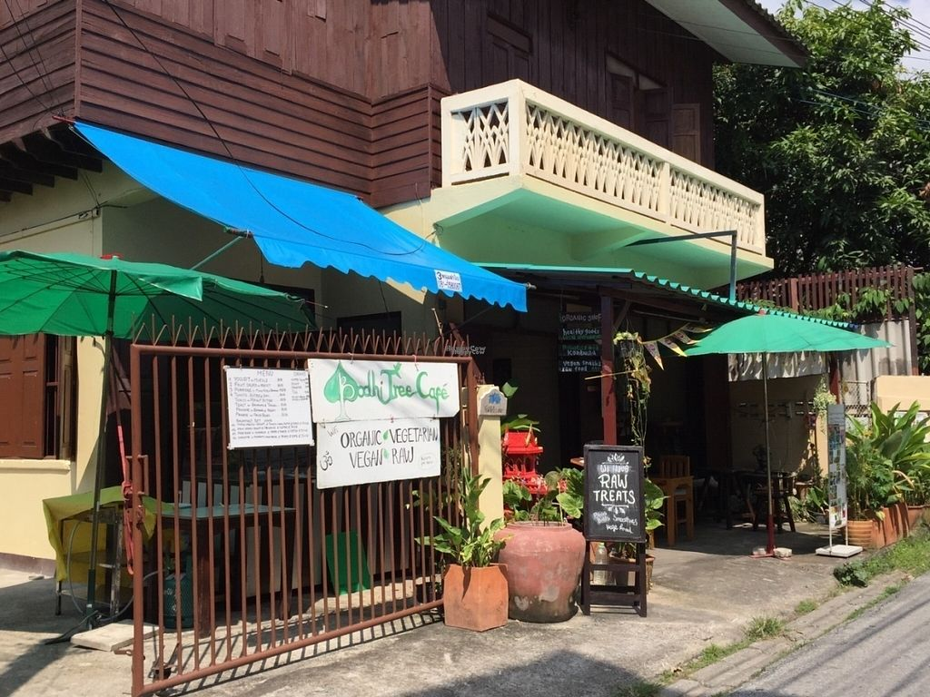 "Photo of Bodhi Tree Cafe 2  by <a href=""/members/profile/peterstuckings"">peterstuckings</a> <br/>Street view <br/> October 21, 2016  - <a href='/contact/abuse/image/76071/183372'>Report</a>"