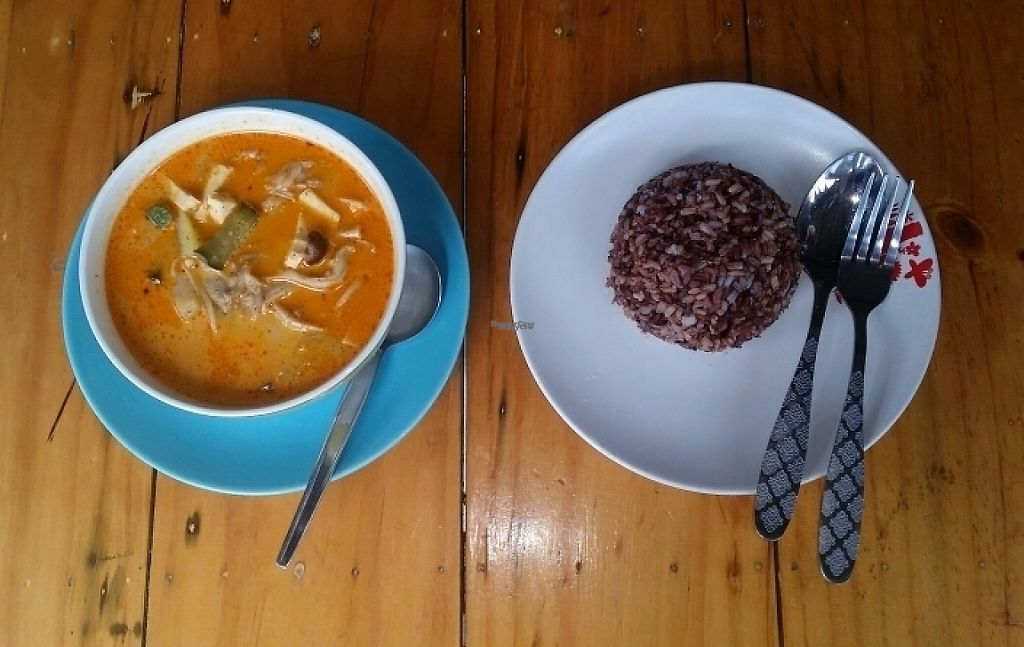 "Photo of Bodhi Tree Cafe 2  by <a href=""/members/profile/Mike%20Munsie"">Mike Munsie</a> <br/>massaman curry and brown/red rice <br/> November 9, 2016  - <a href='/contact/abuse/image/76071/187674'>Report</a>"