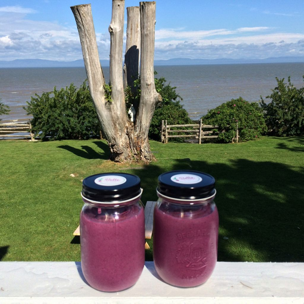 """Photo of La Bette a Cath  by <a href=""""/members/profile/CatherineFortin-Dube"""">CatherineFortin-Dube</a> <br/>Smoothies BOOST + terrasse avec vue sur le Fleuve <br/> July 23, 2016  - <a href='/contact/abuse/image/76074/161696'>Report</a>"""