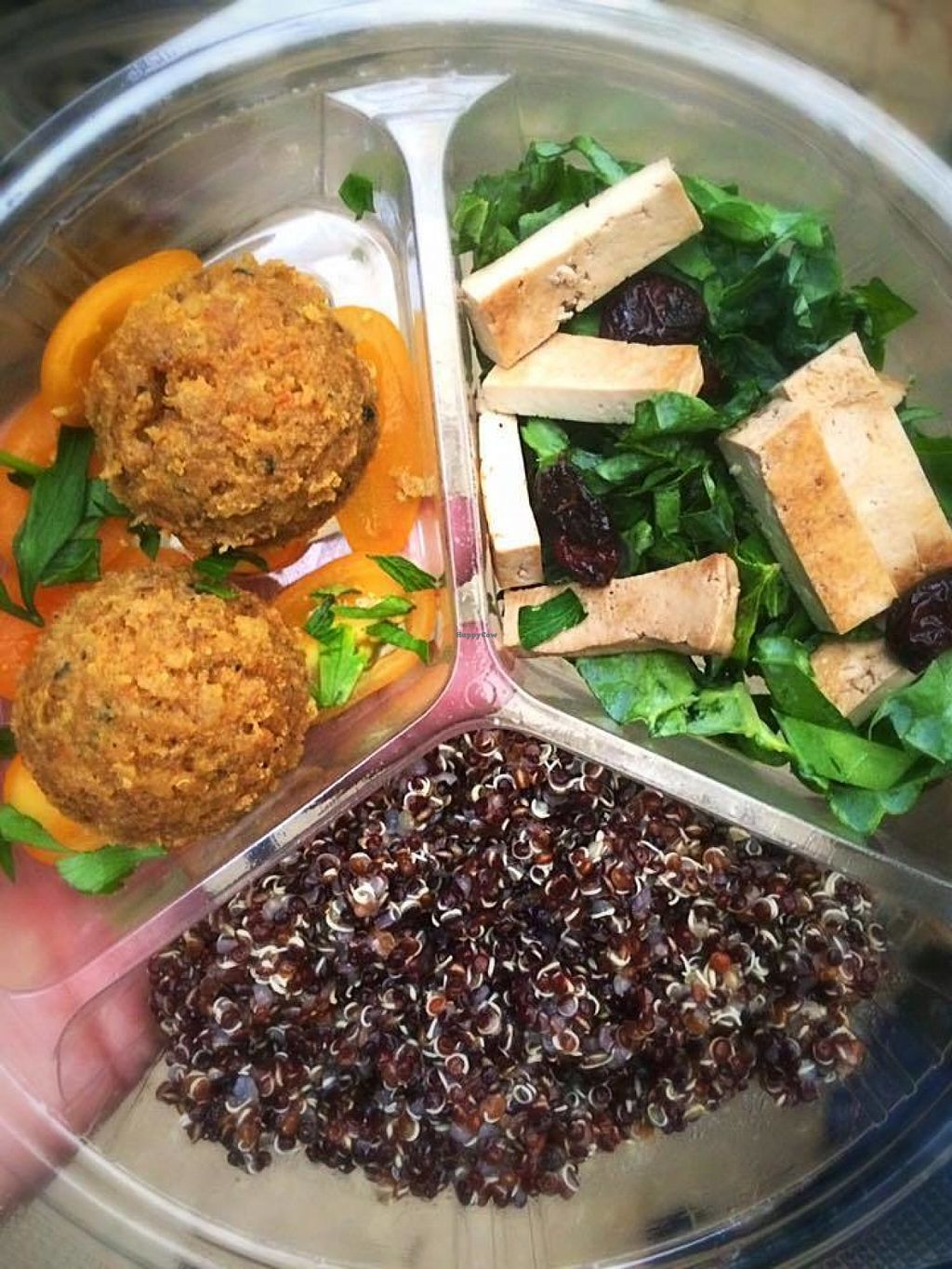 "Photo of Natural Choice Cafe  by <a href=""/members/profile/Chefrawraw"">Chefrawraw</a> <br/>""Indian Burger Bites"", kale salad with tofu, quinoa in a platter!  <br/> July 26, 2016  - <a href='/contact/abuse/image/76087/162348'>Report</a>"