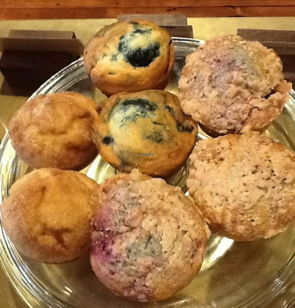 """Photo of Plank Coffee  by <a href=""""/members/profile/community"""">community</a> <br/>Muffins <br/> March 20, 2017  - <a href='/contact/abuse/image/76159/238647'>Report</a>"""