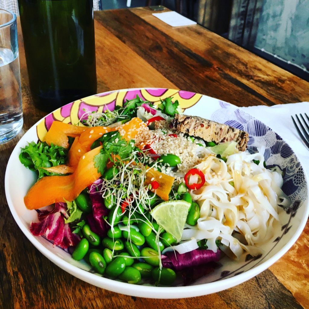 "Photo of Roots  by <a href=""/members/profile/SeitanSeitanSeitan"">SeitanSeitanSeitan</a> <br/>Edamame noodle salad <br/> August 6, 2016  - <a href='/contact/abuse/image/76224/166110'>Report</a>"