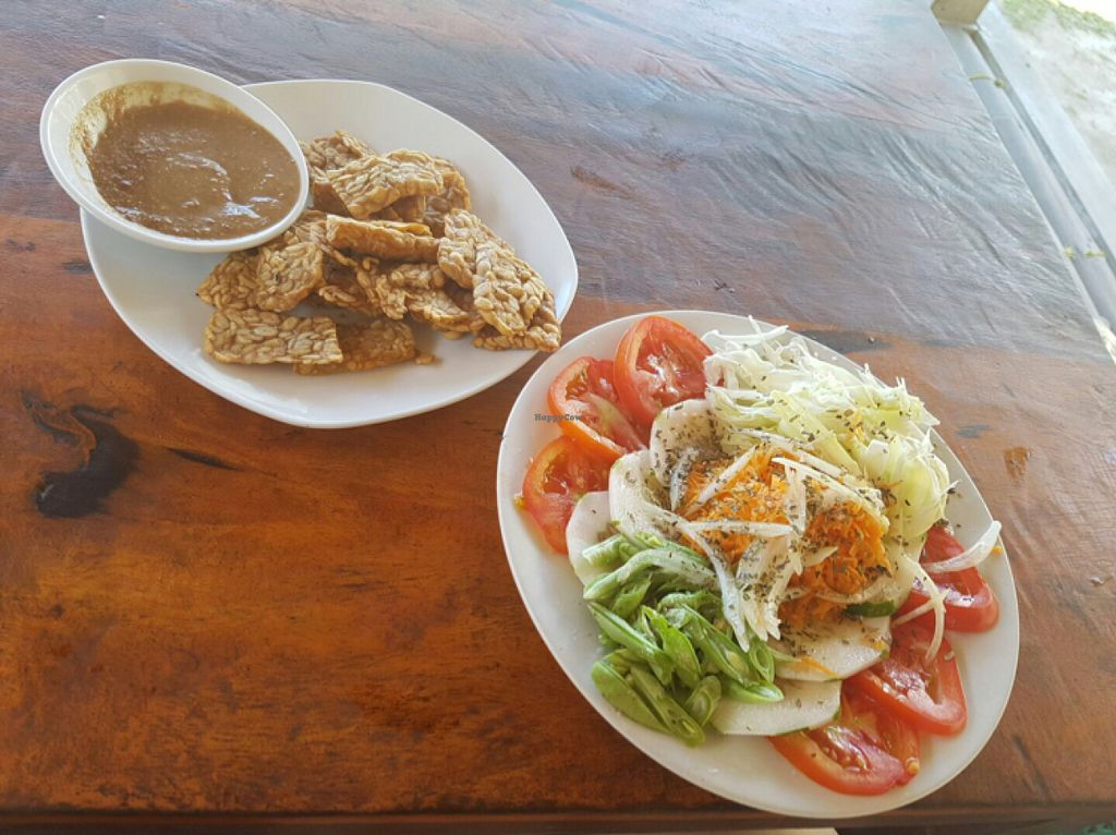 "Photo of Ya ya Warung  by <a href=""/members/profile/Sasae"">Sasae</a> <br/>fried Tempeh& mixed salad <br/> July 11, 2016  - <a href='/contact/abuse/image/76358/159159'>Report</a>"