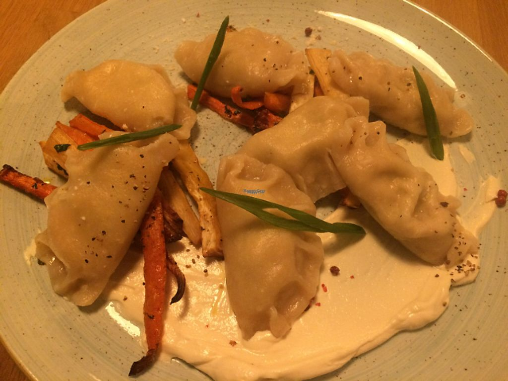 """Photo of Veganic  by <a href=""""/members/profile/FatTonyBMX"""">FatTonyBMX</a> <br/>Tofu dumplings over """"vegetables"""" (i.e.: carrots) with vegan sour cream <br/> March 3, 2017  - <a href='/contact/abuse/image/76428/232253'>Report</a>"""