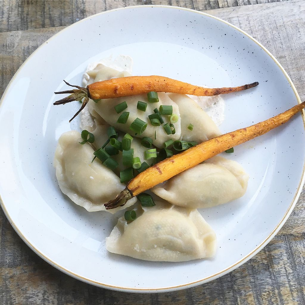 """Photo of Veganic  by <a href=""""/members/profile/MorganCrawford"""">MorganCrawford</a> <br/>vegan dumplings <br/> July 3, 2017  - <a href='/contact/abuse/image/76428/276323'>Report</a>"""