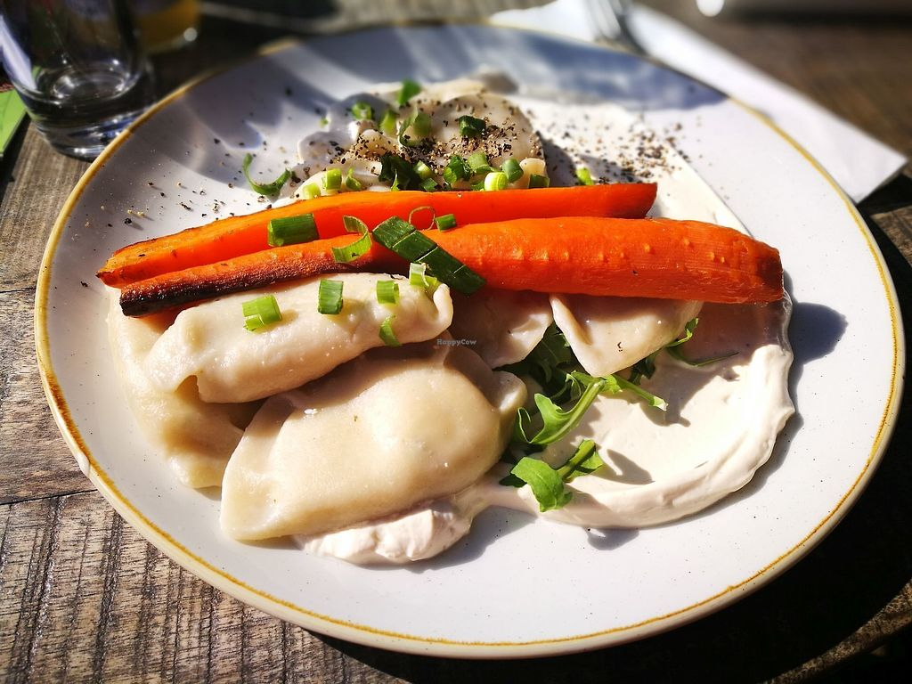 """Photo of Veganic  by <a href=""""/members/profile/k-girl80"""">k-girl80</a> <br/>main dish: homemade dumplings (pierogis?) with vegan sour cream  <br/> October 12, 2017  - <a href='/contact/abuse/image/76428/314546'>Report</a>"""