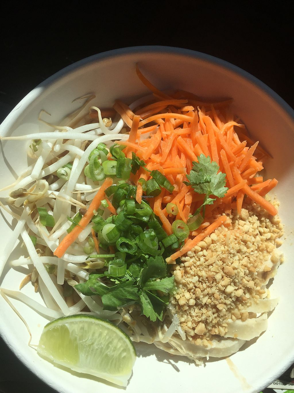 """Photo of Noodle Nirvana  by <a href=""""/members/profile/DeltaDiva5"""">DeltaDiva5</a> <br/>Thai Chicken with Kentucky Ramen noodles  <br/> September 29, 2017  - <a href='/contact/abuse/image/76449/309852'>Report</a>"""