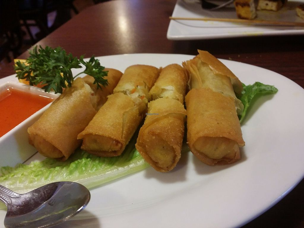 "Photo of Siam Orchid Thai Cuisine  by <a href=""/members/profile/purplesnowcone"">purplesnowcone</a> <br/>crispy spring rolls  <br/> July 24, 2017  - <a href='/contact/abuse/image/76464/284432'>Report</a>"