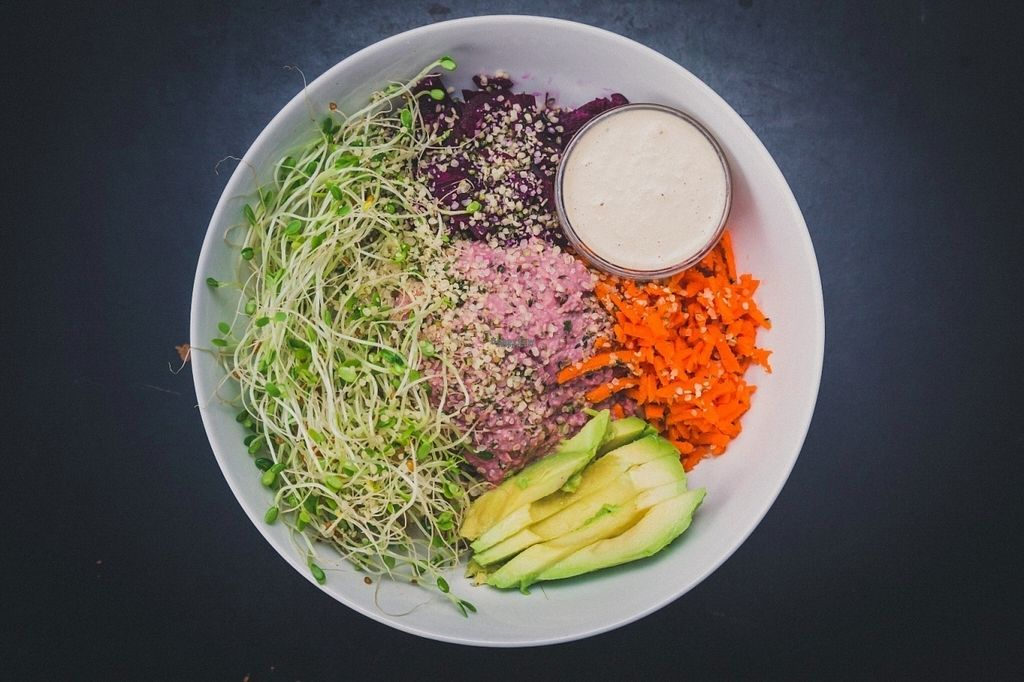 "Photo of Nourish Wellness Cafe  by <a href=""/members/profile/nourishjuice"">nourishjuice</a> <br/>Nourish Bowl: Brown Rice, Fermented Beets, Shredded Carrots, Hummus, Sprouts, and Avocado, with Cashew Ginger Sauce.  <br/> September 21, 2016  - <a href='/contact/abuse/image/76524/177200'>Report</a>"