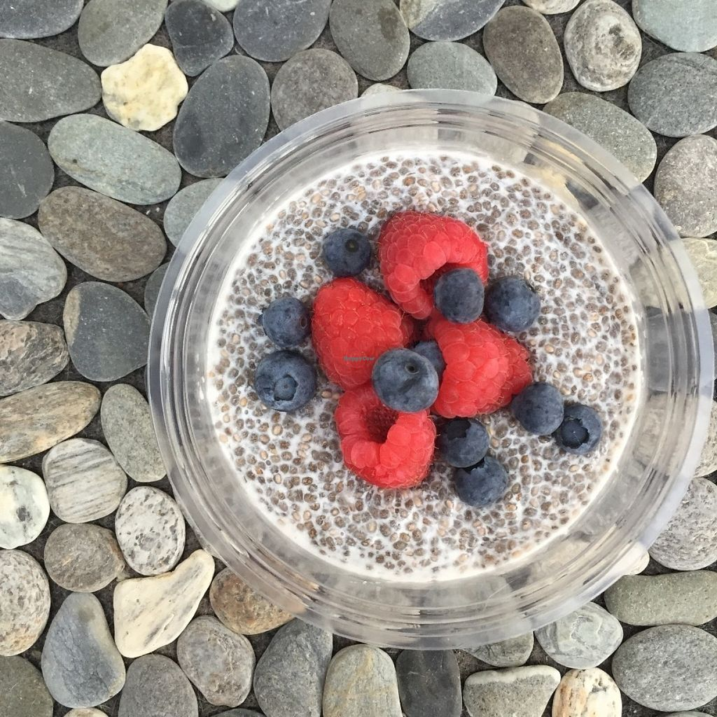 """Photo of GreenTree Goodness  by <a href=""""/members/profile/PrueGreentree"""">PrueGreentree</a> <br/>Chia pud <br/> July 15, 2016  - <a href='/contact/abuse/image/76535/160045'>Report</a>"""