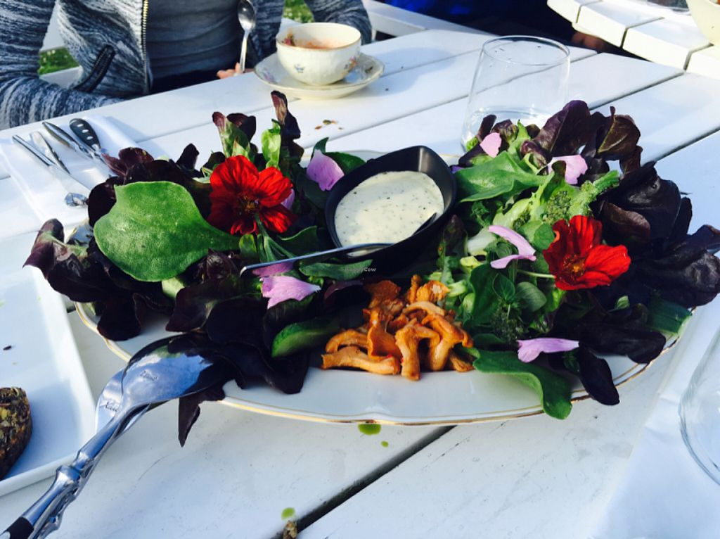 """Photo of Hornuddens Tradgard  by <a href=""""/members/profile/veganmom"""">veganmom</a> <br/>the most delectable salad ever with vegan herb aioli <br/> July 15, 2016  - <a href='/contact/abuse/image/76596/160093'>Report</a>"""