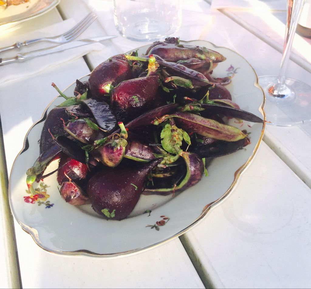"""Photo of Hornuddens Tradgard  by <a href=""""/members/profile/veganmom"""">veganmom</a> <br/>beets & beans salad  <br/> July 15, 2016  - <a href='/contact/abuse/image/76596/160098'>Report</a>"""
