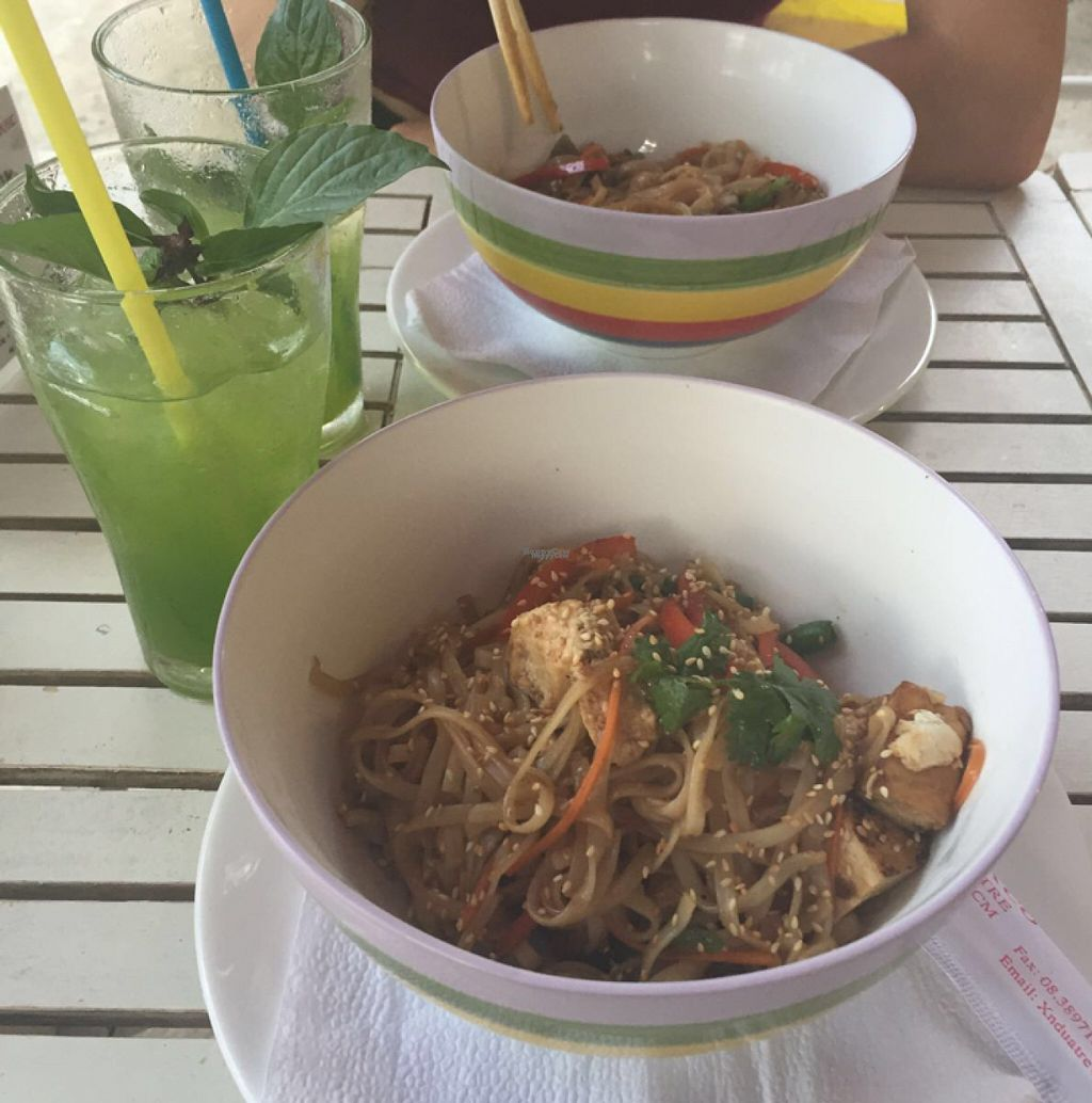 """Photo of Surfing Birds Wok  by <a href=""""/members/profile/Shannybadds"""">Shannybadds</a> <br/>Vegan tofu noodles and vegan eggplant noodles with basil lemonade  <br/> August 16, 2016  - <a href='/contact/abuse/image/76664/169213'>Report</a>"""
