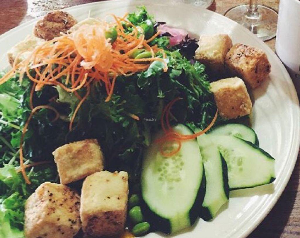 "Photo of Pickle Jar Kitchen  by <a href=""/members/profile/Lemonadrianne"">Lemonadrianne</a> <br/>Crispy Tofu Salad <br/> September 12, 2016  - <a href='/contact/abuse/image/76700/202683'>Report</a>"