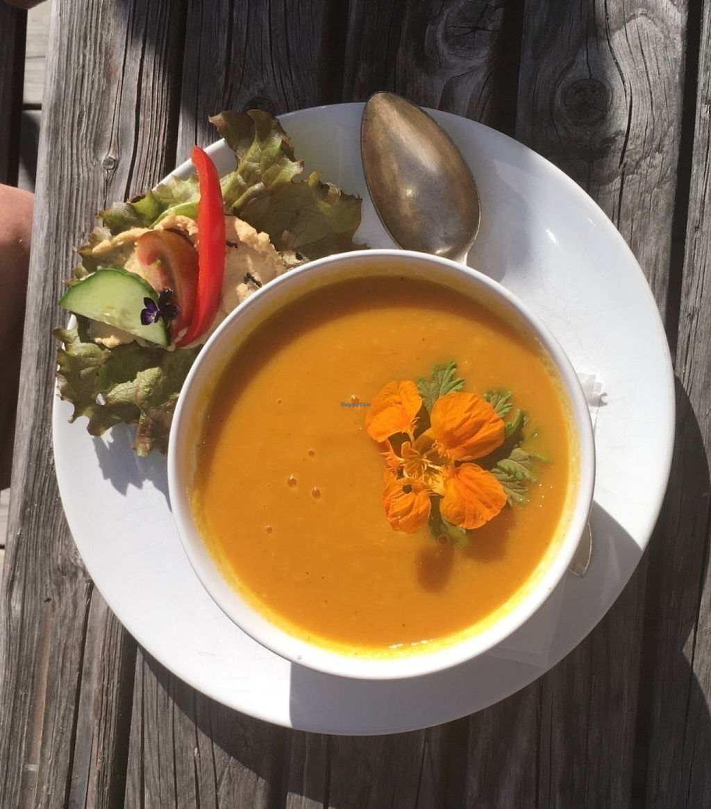 "Photo of Cafe Samt  by <a href=""/members/profile/veganmom"">veganmom</a> <br/>Ginger / carrot soup  <br/> July 17, 2016  - <a href='/contact/abuse/image/76730/160490'>Report</a>"
