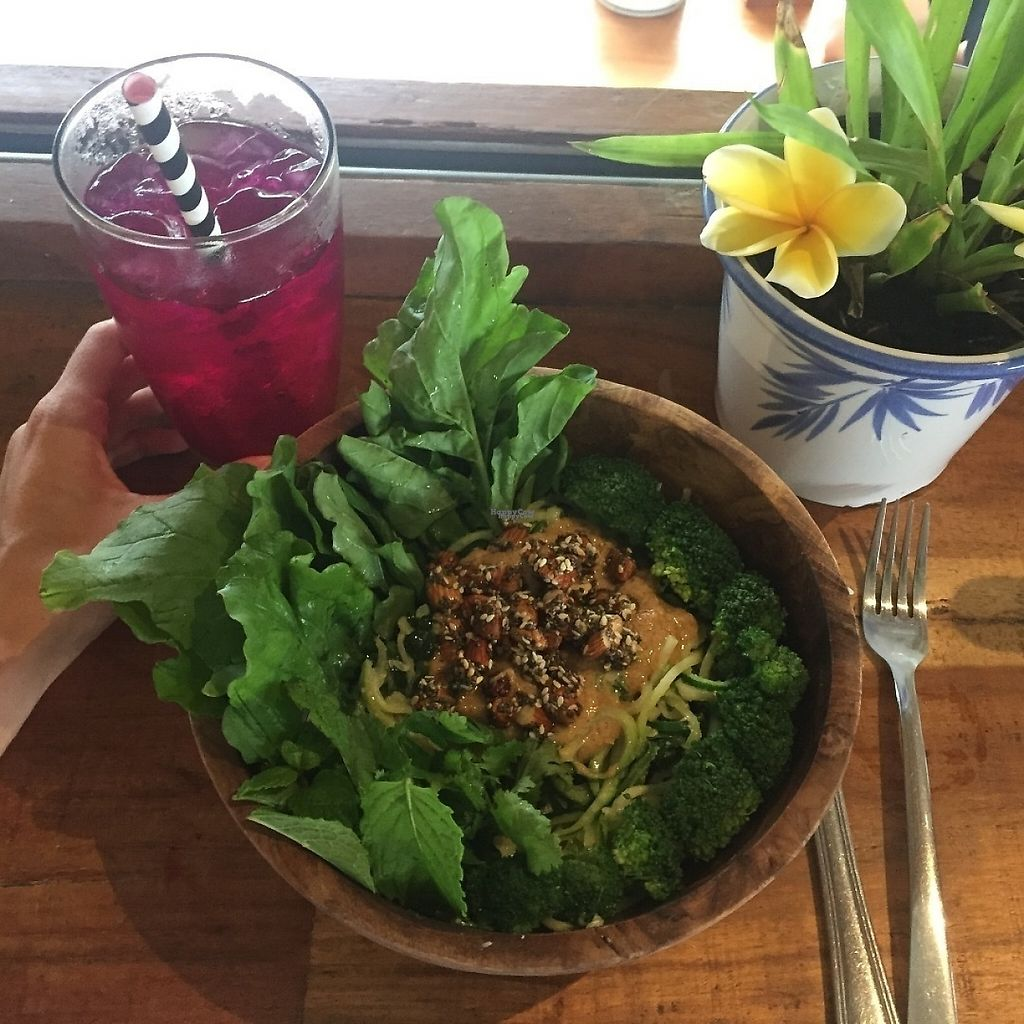 "Photo of The Shady Shack  by <a href=""/members/profile/tamarabrooke"">tamarabrooke</a> <br/>Go green bowl + dragonfruit kombucha <br/> December 15, 2016  - <a href='/contact/abuse/image/76760/201334'>Report</a>"
