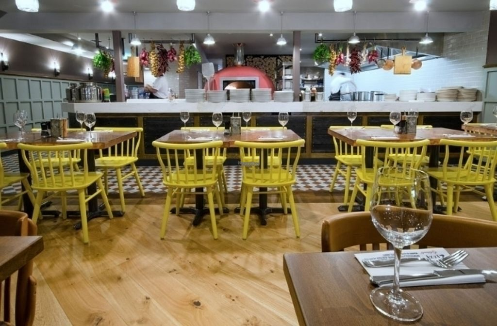 """Photo of Zizzi  by <a href=""""/members/profile/Meaks"""">Meaks</a> <br/>Zizzi <br/> August 13, 2016  - <a href='/contact/abuse/image/76831/168385'>Report</a>"""