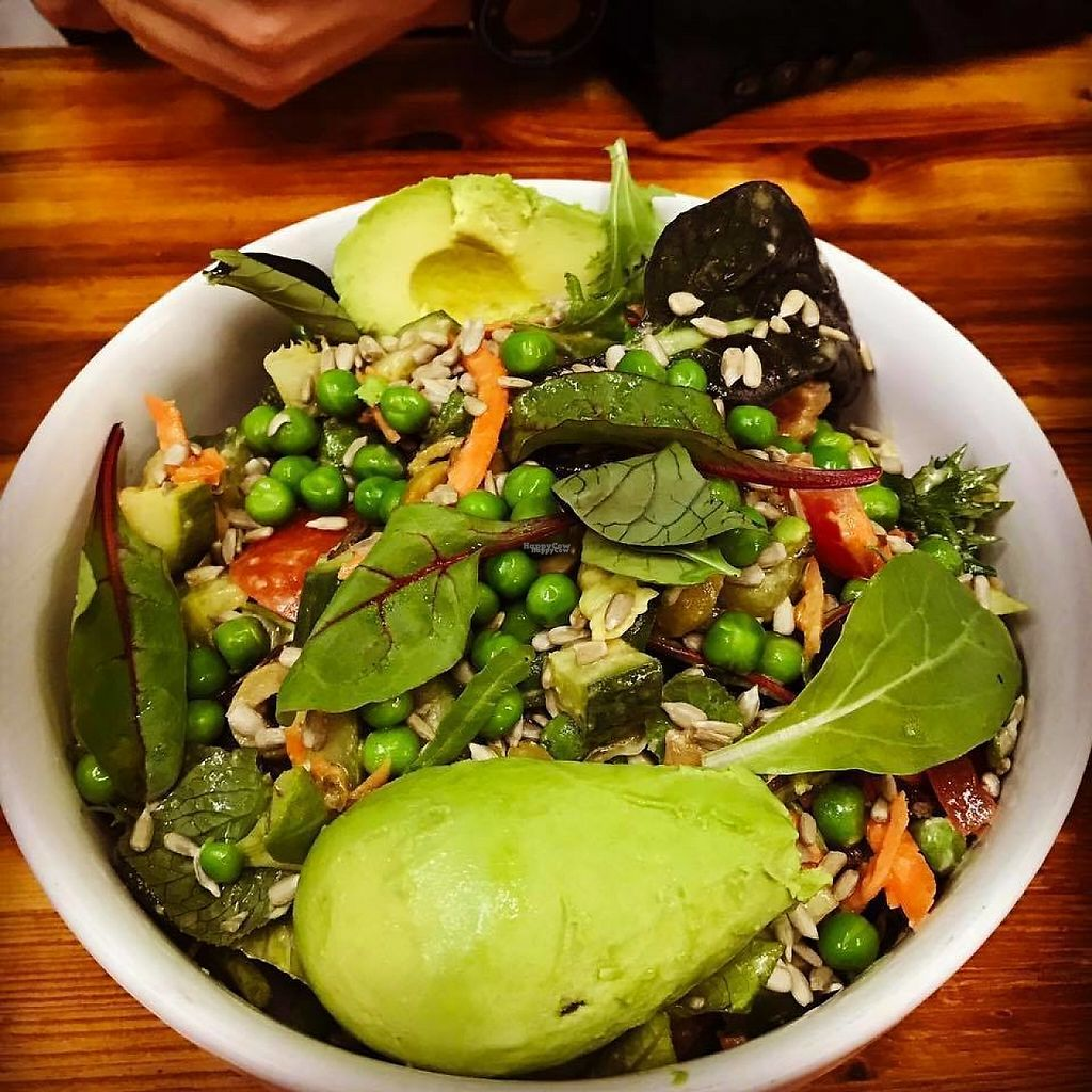"""Photo of Green Smile  by <a href=""""/members/profile/community"""">community</a> <br/>Vegan Salad <br/> March 8, 2017  - <a href='/contact/abuse/image/76901/234263'>Report</a>"""
