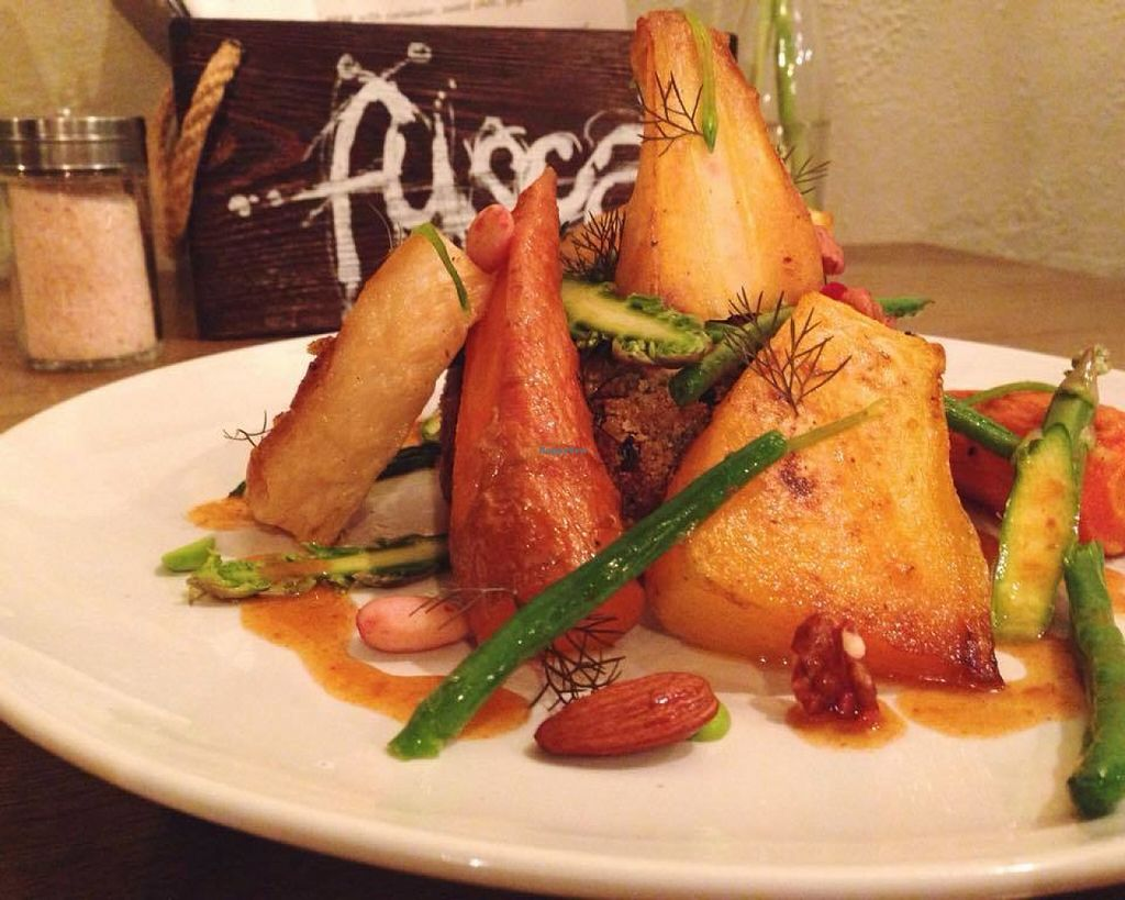 """Photo of Fusca   by <a href=""""/members/profile/Meaks"""">Meaks</a> <br/>Vegan Nut Roast, with maple roasted root veg and seasonal greens <br/> July 31, 2016  - <a href='/contact/abuse/image/77027/163630'>Report</a>"""