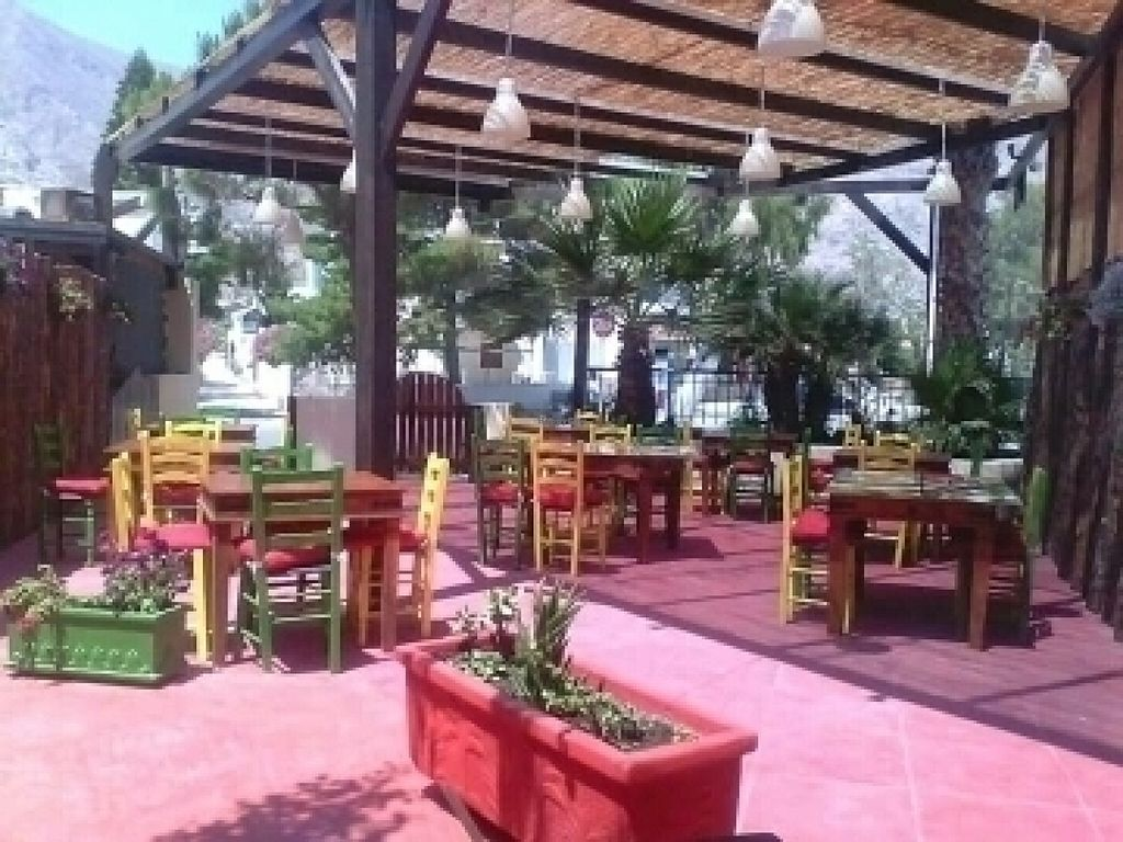 "Photo of Gecko Burger Place  by <a href=""/members/profile/moritz29194"">moritz29194</a> <br/>outdoor seating area <br/> July 25, 2016  - <a href='/contact/abuse/image/77036/162100'>Report</a>"