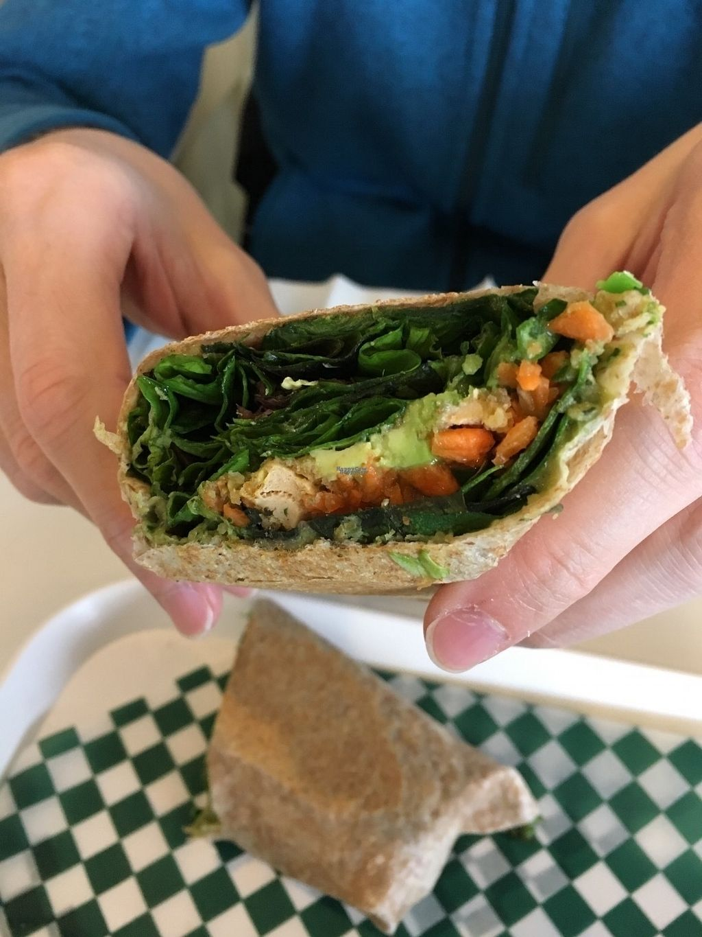 """Photo of CLOSED: Gojigo  by <a href=""""/members/profile/vegan%20frog"""">vegan frog</a> <br/>Wrap <br/> October 22, 2016  - <a href='/contact/abuse/image/77074/183524'>Report</a>"""