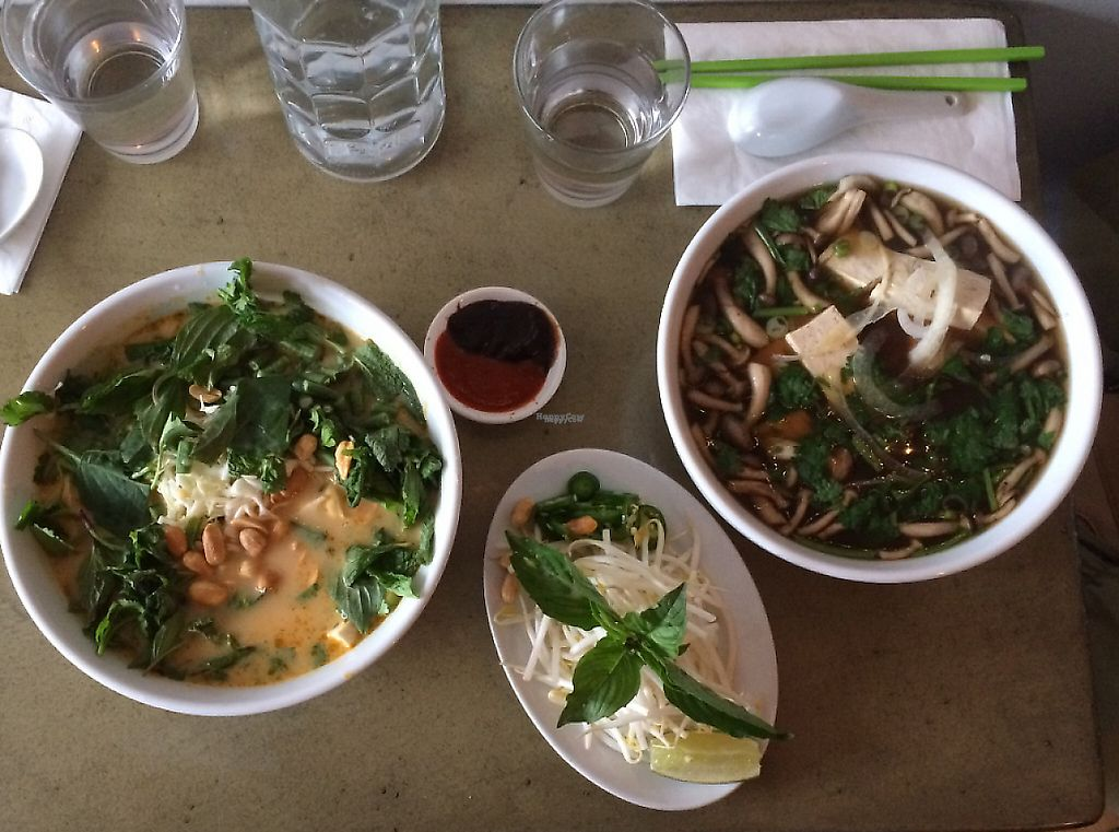 "Photo of Stock  by <a href=""/members/profile/dgross"">dgross</a> <br/>Vegan mushroom Pho and Khao Poon curry noodles <br/> October 9, 2016  - <a href='/contact/abuse/image/77097/223586'>Report</a>"