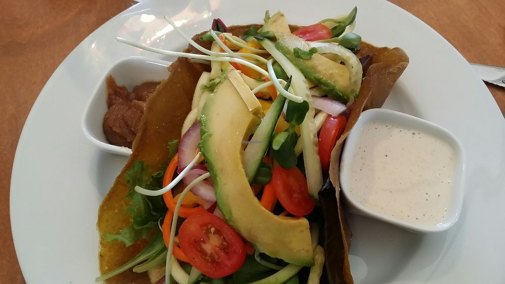 """Photo of Vibrance  by <a href=""""/members/profile/BennyD"""">BennyD</a> <br/>The lettuce wrap is amazing! <br/> July 30, 2017  - <a href='/contact/abuse/image/77106/286746'>Report</a>"""