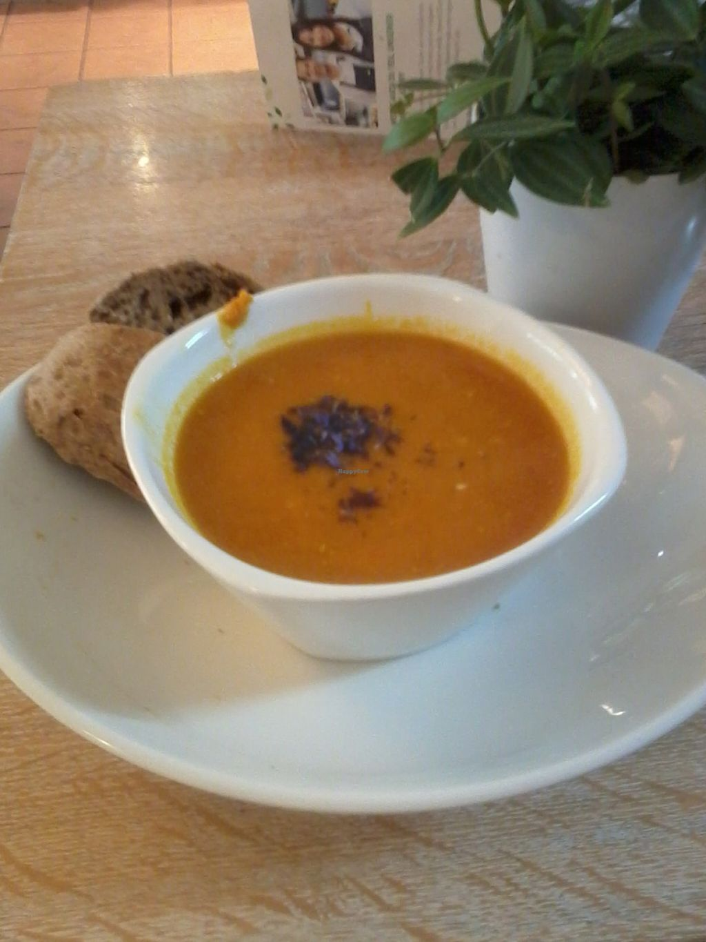 """Photo of Dean & David - Schellingstr  by <a href=""""/members/profile/deadpledge"""">deadpledge</a> <br/>Red lentil soup <br/> July 28, 2016  - <a href='/contact/abuse/image/77182/162950'>Report</a>"""