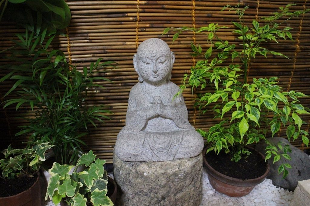 """Photo of Maneki Machiya  by <a href=""""/members/profile/SusanRoberts"""">SusanRoberts</a> <br/>Peaceful little window garden <br/> July 28, 2016  - <a href='/contact/abuse/image/77188/163013'>Report</a>"""
