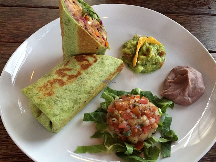 """Photo of La Pacha Mama  by <a href=""""/members/profile/SusanRoberts"""">SusanRoberts</a> <br/>padre santo burrito, no sour cream <br/> October 25, 2016  - <a href='/contact/abuse/image/77254/184306'>Report</a>"""