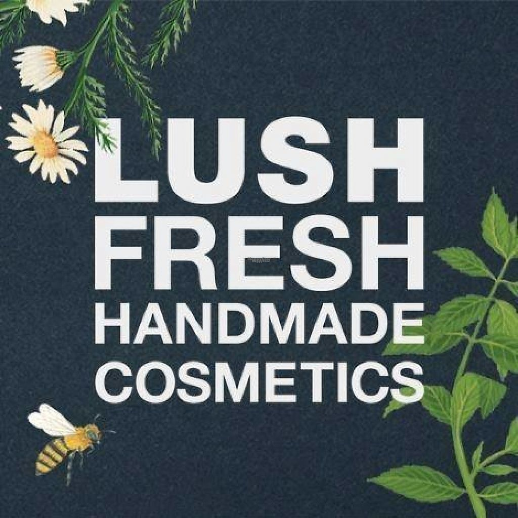 """Photo of Lush  by <a href=""""/members/profile/community"""">community</a> <br/>logo  <br/> February 3, 2017  - <a href='/contact/abuse/image/77273/221505'>Report</a>"""