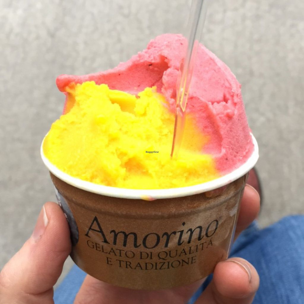 """Photo of Amorino  by <a href=""""/members/profile/ieatmodestmouse"""">ieatmodestmouse</a> <br/>mango strawberry vegan <br/> May 27, 2017  - <a href='/contact/abuse/image/77357/262932'>Report</a>"""