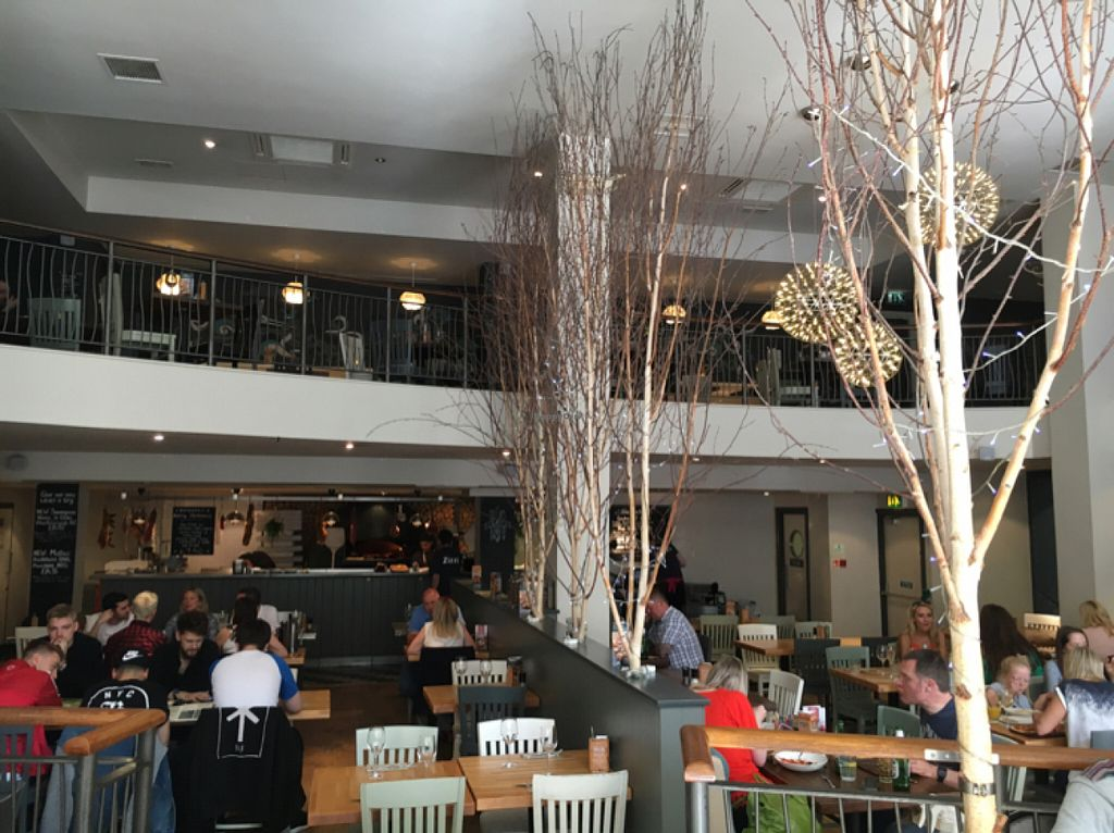 """Photo of Zizzi  by <a href=""""/members/profile/hack_man"""">hack_man</a> <br/>Inside  <br/> July 30, 2016  - <a href='/contact/abuse/image/77383/163442'>Report</a>"""