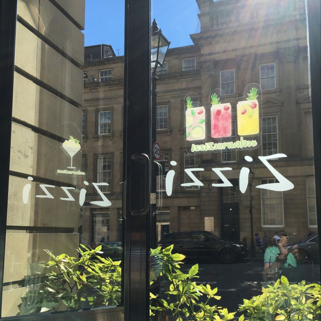 """Photo of Zizzi  by <a href=""""/members/profile/hack_man"""">hack_man</a> <br/>sunny day looking out  <br/> July 30, 2016  - <a href='/contact/abuse/image/77383/163445'>Report</a>"""