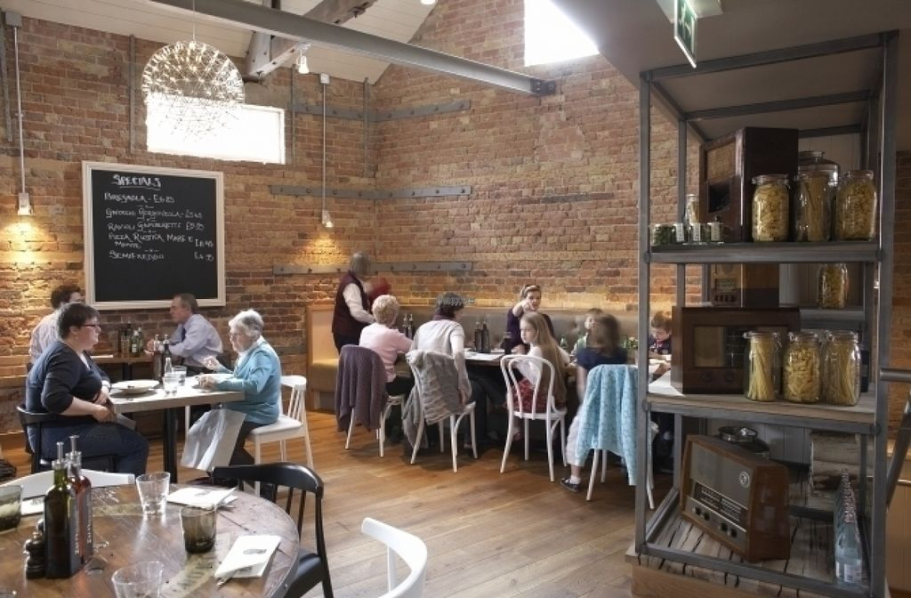 """Photo of Zizzi  by <a href=""""/members/profile/Meaks"""">Meaks</a> <br/>Zizzi <br/> August 18, 2016  - <a href='/contact/abuse/image/77420/169794'>Report</a>"""