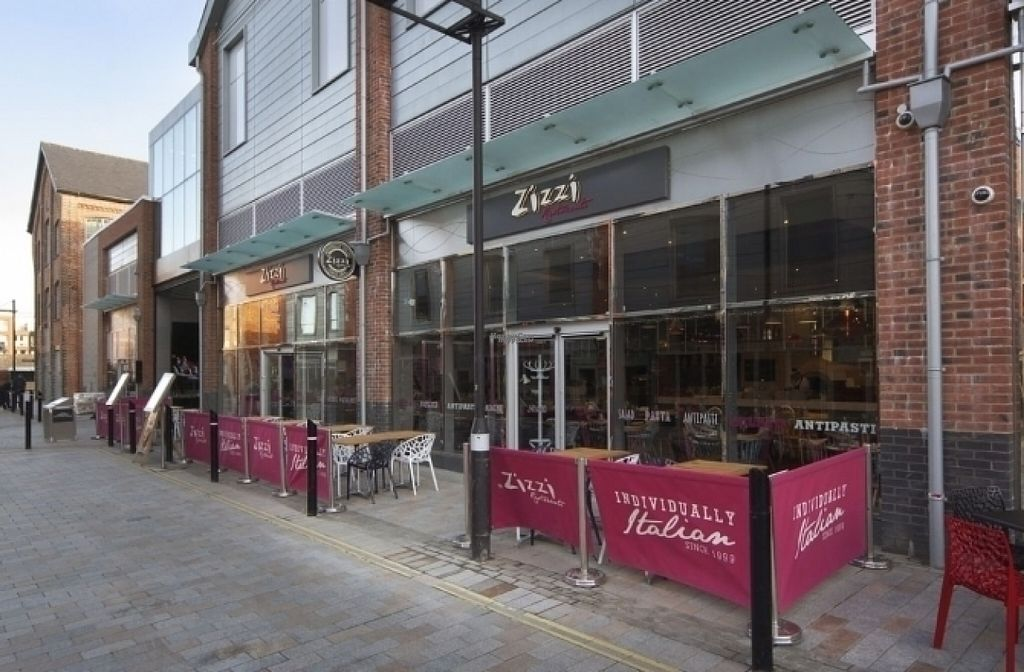 """Photo of Zizzi  by <a href=""""/members/profile/Meaks"""">Meaks</a> <br/>Zizzi <br/> August 19, 2016  - <a href='/contact/abuse/image/77450/170037'>Report</a>"""