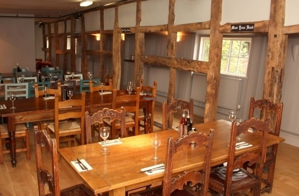 """Photo of Zizzi  by <a href=""""/members/profile/Meaks"""">Meaks</a> <br/>Zizzi <br/> August 11, 2016  - <a href='/contact/abuse/image/77455/167763'>Report</a>"""